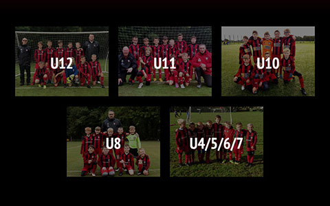 Holmfirth Town Junior Football Club responsive WordPress 5 Multisite